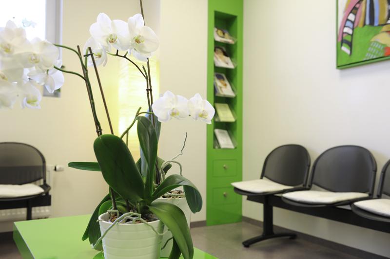 Wartezimmer Frauenarztpraxis Dr. Rausch Neumarkt